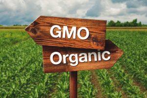 Environmental Issues - Genetically Modified Organisms @ Loucks Auditorium | Salem | Oregon | United States