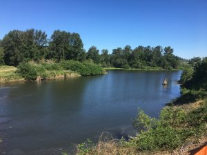 The Natural History and Biology of Minto Brown Island Park @ Riverfront Park Amphitheater | Salem | Oregon | United States